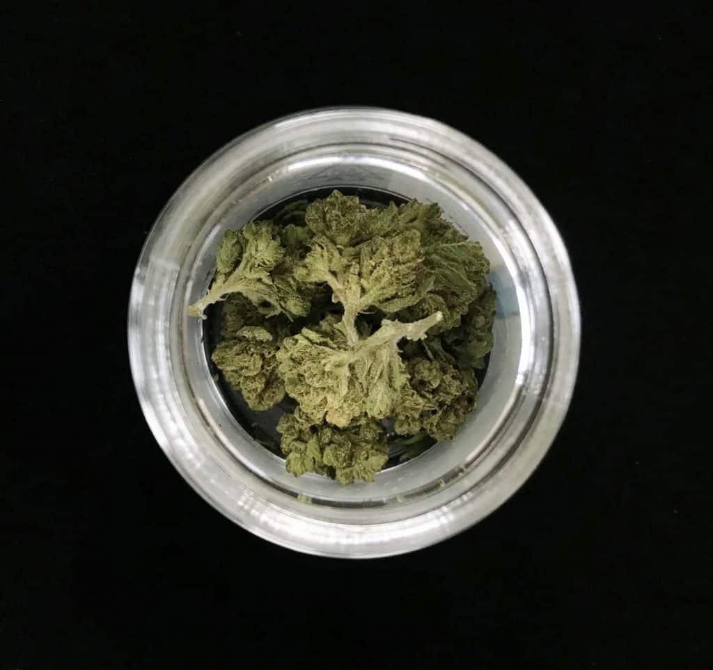Jar with marijuana buds in it.