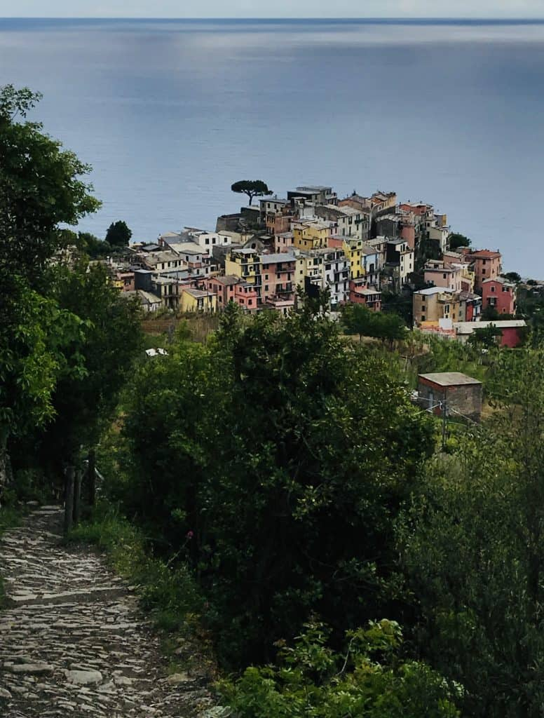 View of Corniglia Italy from a  hiking trail inCinque Terre during my solo visit to Italy