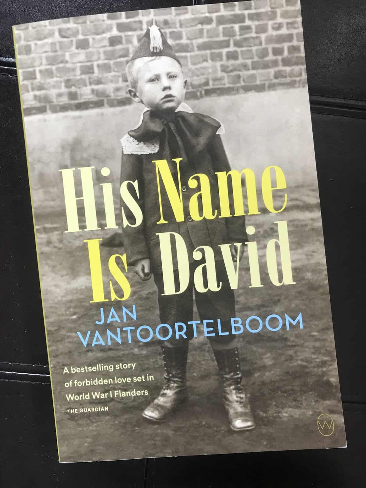 His Name is David – Book Review