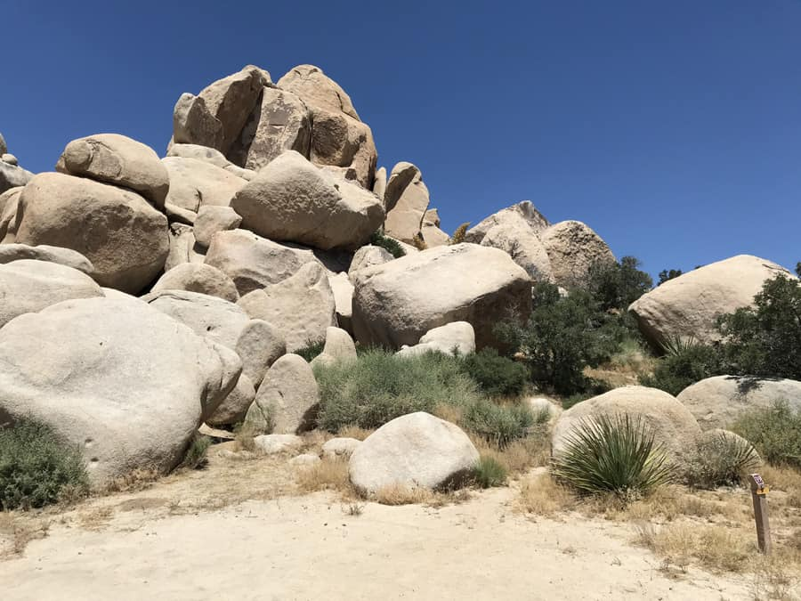 Campsite in Joshua Tree National Park showing post to clip reservation tag
