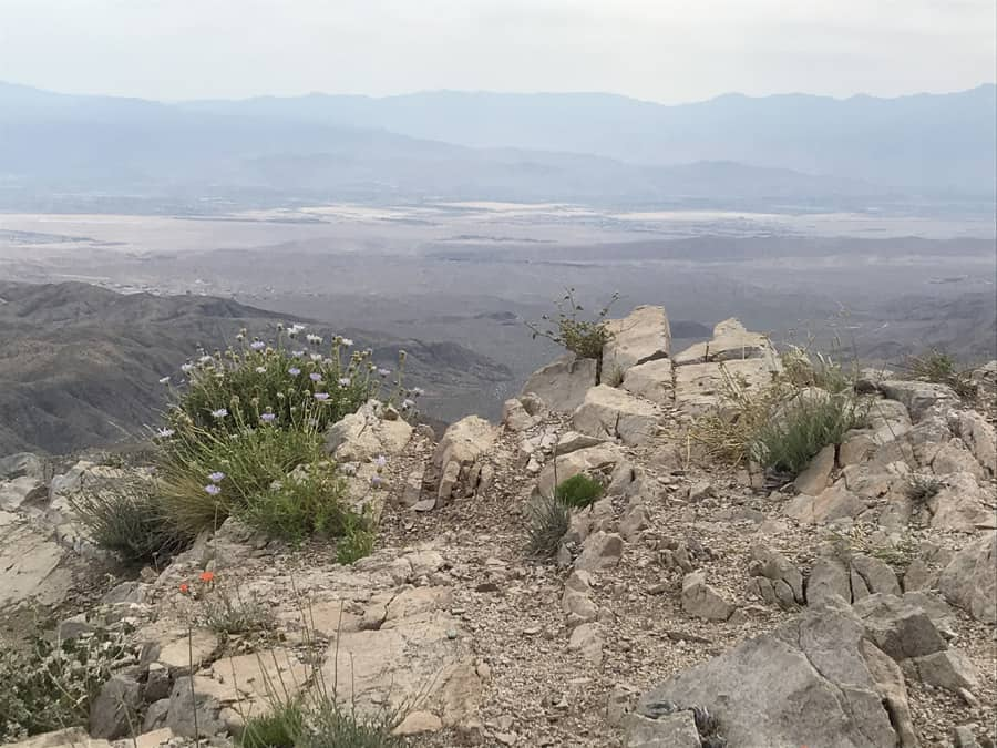 View of Coachella Valley from Keys Point in Joshua Tree National Park