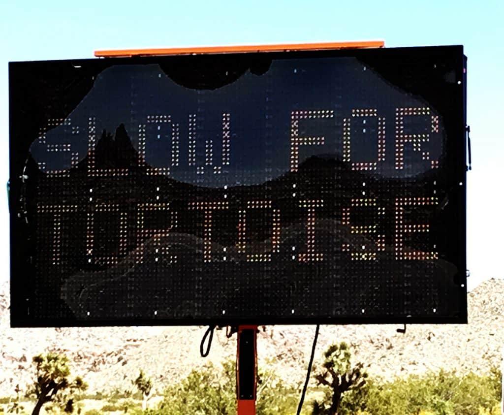 Slow for tortoise sign in Joshua Tree National Park
