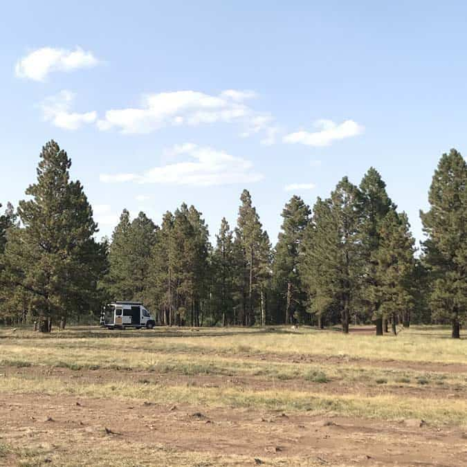 Converted Promaster van camped for free in Apache-Sitgreaves NF. Women camping alone.