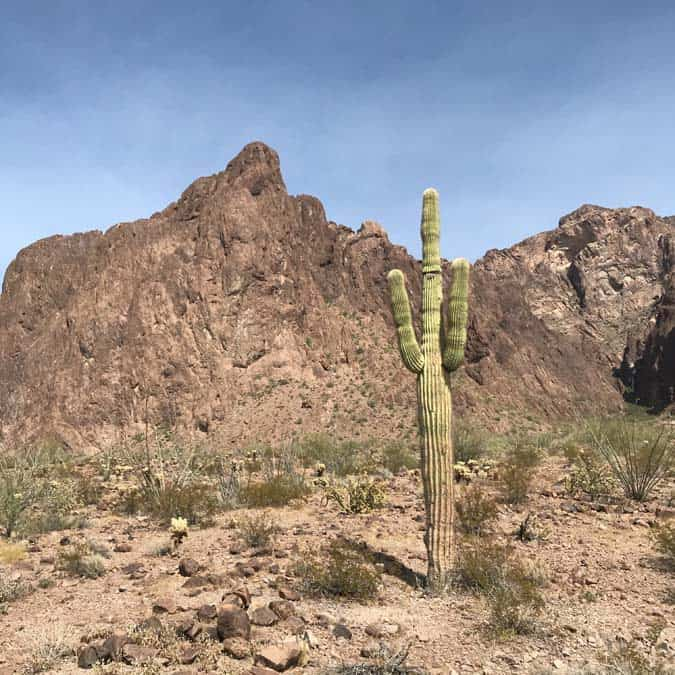 Women Camping Alone: A How-to Guide to the best of Central Arizona
