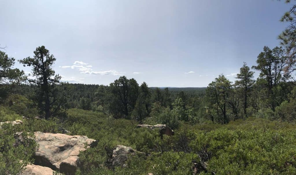 A view of the Mogollon Rim in Show Low, AZ. Women camping alone in Arizona.