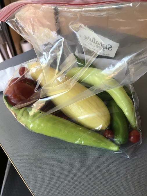 Bag of home-grown vegetables.  A gift from Boondockers Welcome host. Women camping alone.