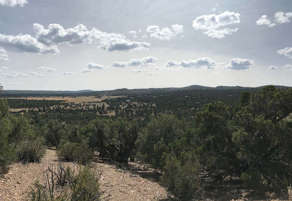 View from Ghost of Coyote Trail near Show Low AZ